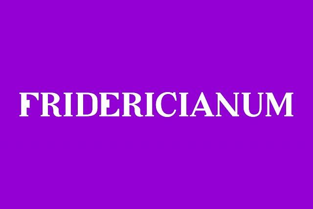Fridericianum Identity